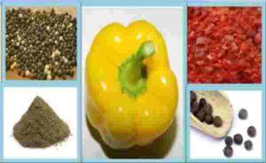 перец и специи - фото для статьи