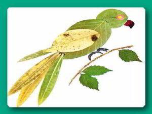 птичка из листьев