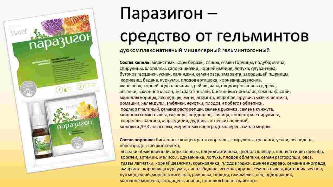 parazigonot_gelmintov