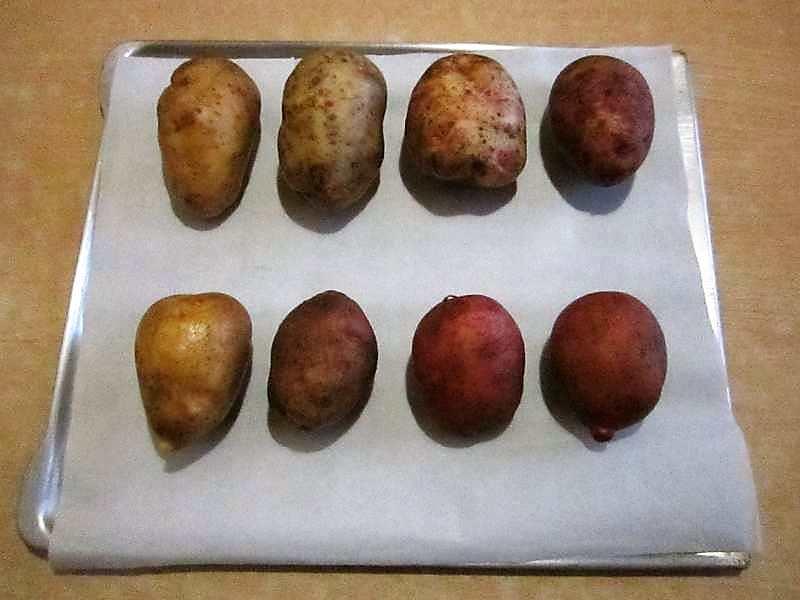 клубни картофеля -фото для рецепта блюда